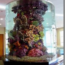 aquarium-installation